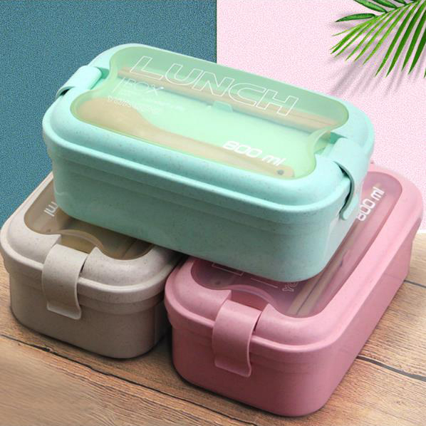 SD 24002 - Lunch Box