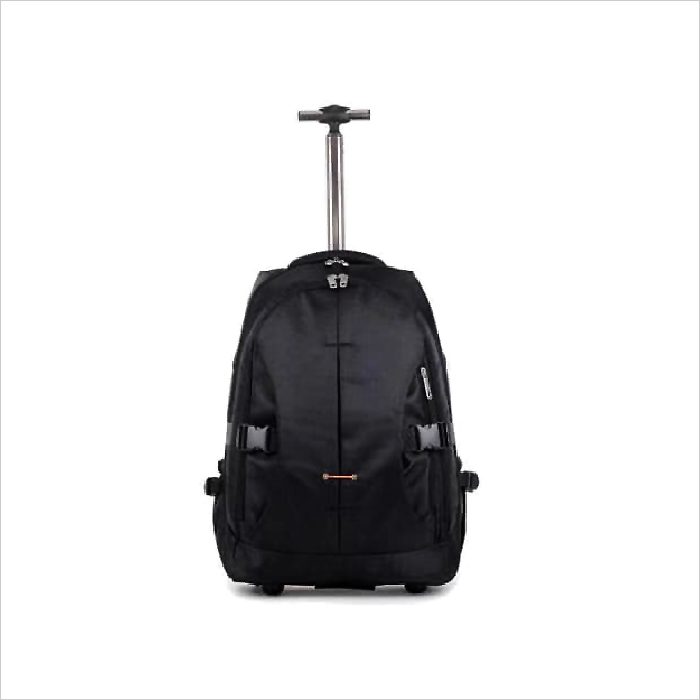 LB 001 - Luggage Backpack